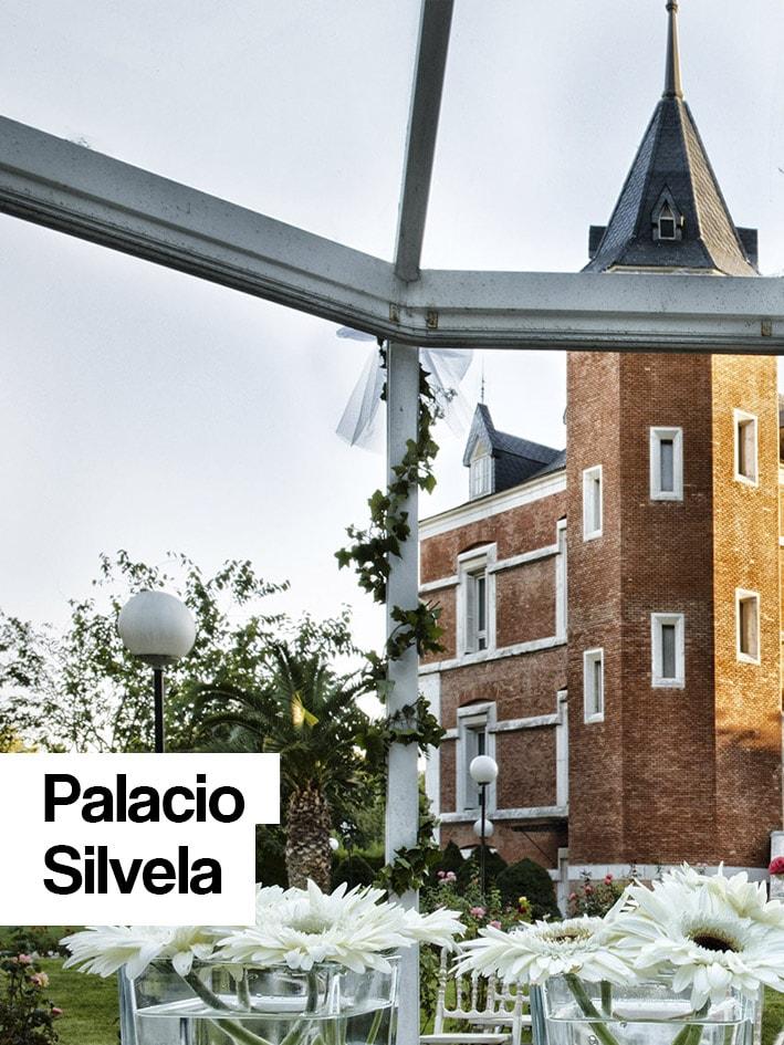 palacio-silvela